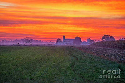 Photograph - Waking Up On The Farm by David Arment