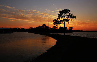 Photograph - Walden On Lake Conroe Sunset by Judy Vincent