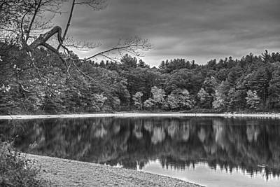 Walden Pond Fall Foliage Concord Ma Black And White Art Print by Toby McGuire