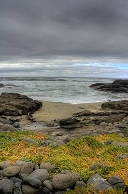 Photograph - Waldport Beach Beauty by Tyra OBryant