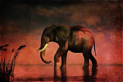 Painting - Walk Alone by Jan Keteleer