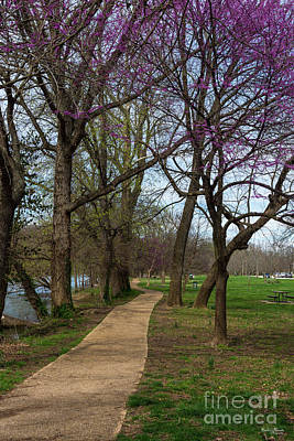 Photograph - Walk Along Finley River by Jennifer White