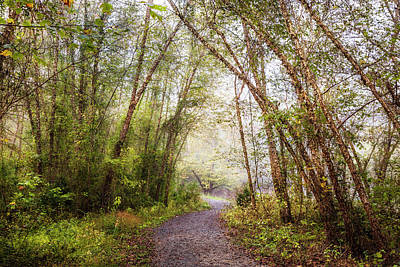 Photograph - Walk Along The River Trail by Debra and Dave Vanderlaan