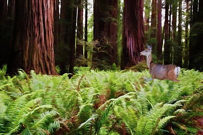 Photograph - Walk Among Giants by Lana Trussell