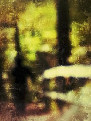Photograph - Walk In The Park by Al Harden