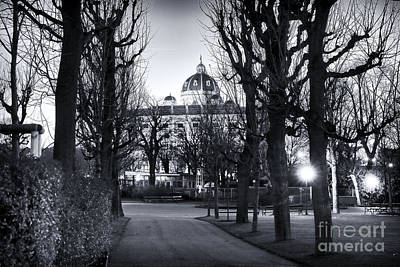 Photograph - Walk In The Volksgarten by John Rizzuto
