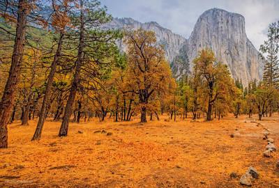 Photograph - Walk In Yosemite by LeeAnn McLaneGoetz McLaneGoetzStudioLLCcom