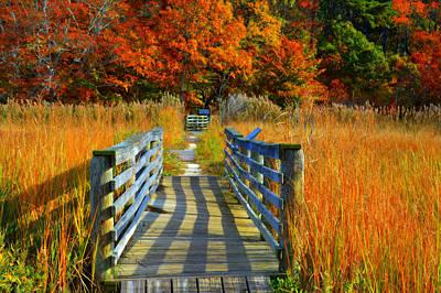 Walk Into Fall Art Print