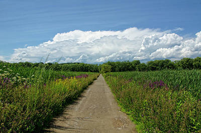 Dirt Roads Photograph - Walk Into The Clouds by Donna Doherty
