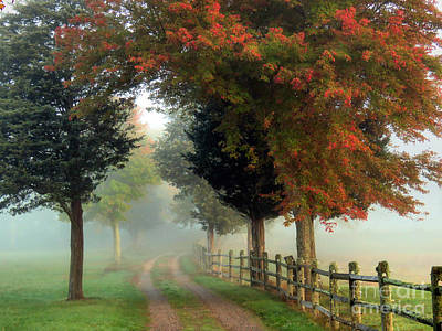 Photograph - Walk Into The Fog by Janice Drew