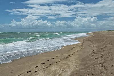 Photograph - Walk On The Beach by John M Bailey