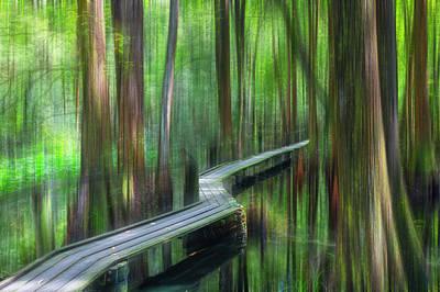 Photograph - Walk Quietly Through The Cypress Dreamscape by Debra and Dave Vanderlaan