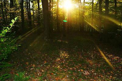 Walk To Light Original