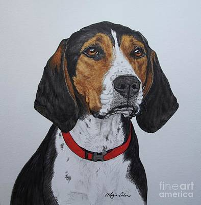 Walker Coonhound - Cooper Art Print by Megan Cohen