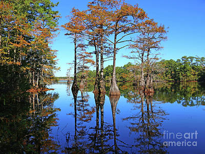 Photograph - Walkers Mill Pond by Marty Fancy