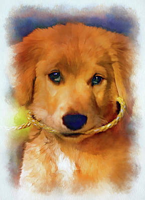 Cute Dog Digital Art - Walkies...pleeease - Paint 2 by Steve Harrington