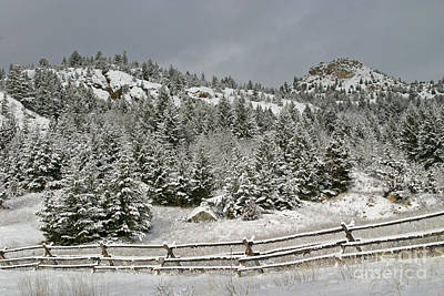 Photograph - Walkin In A Winter Wonderland by Katie LaSalle-Lowery