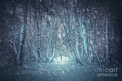 Snowy Night Photograph - Walking Alone In Winter Forest. by Michal Bednarek
