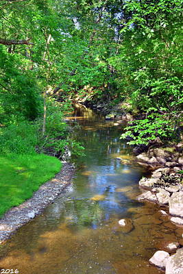 Photograph - Walking Along The Creek by Lisa Wooten