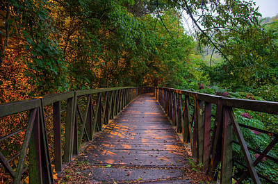 Photograph - Walking / Biking Bridge On Lincoln Drive - Philadelphia by Bill Cannon