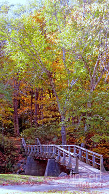 Photograph - Walking Bridge Into Autumn Woods by Kay Novy