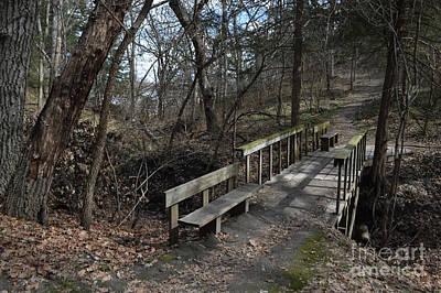 Photograph - Walking Bridge by Renie Rutten
