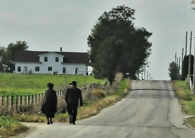 Priska Wettstein Land Shapes Series - Walking by David Arment