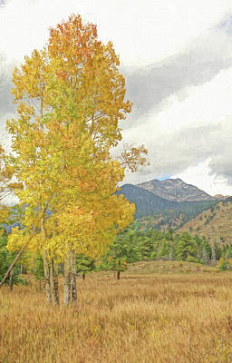 Painting - Walking In Autumn Rocky Mountain National Park by Dan Sproul