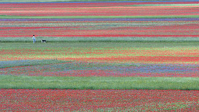 Photograph - Walking In The Colorful Meadows by Edoardo Gobattoni