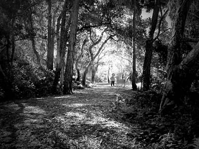Photograph - Walking In The Enchanted Forest B And W by Joyce Dickens