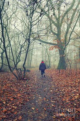 Old Masters Royalty Free Images - Walking in the foggy woodland Royalty-Free Image by Giordano Aita