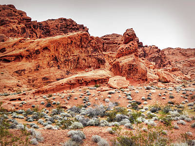 Photograph - Walking In The Valley Of Fire - 2 by Leslie Montgomery