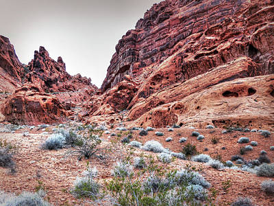Photograph - Walking In The Valley Of Fire - 1 by Leslie Montgomery