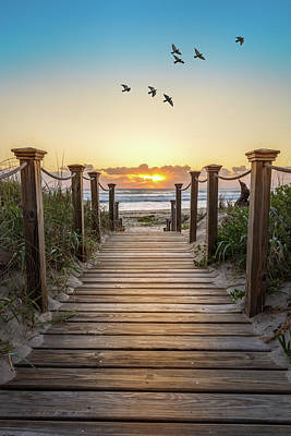 Photograph - Walking Into Paradise by Debra and Dave Vanderlaan