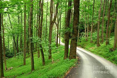 Walking On A Country Road - Appalachian Mountain Backroad Art Print by Matt Tilghman