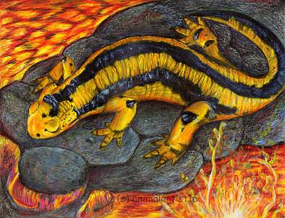 Salamanders Mixed Media - Walking On Lava by Sarah Stanaland