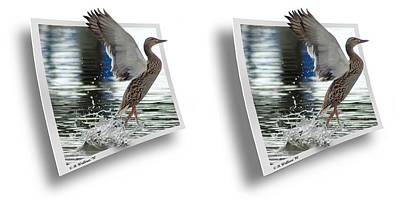Walking On Water - Gently Cross Your Eyes And Focus On The Middle Image Print by Brian Wallace