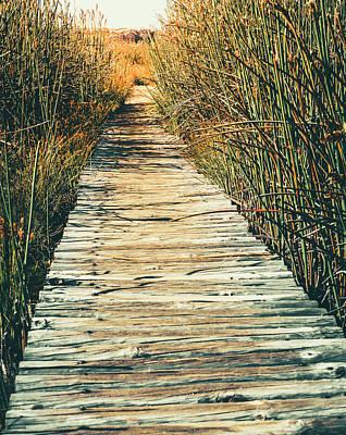 Photograph - Walking Path by Alexey Stiop