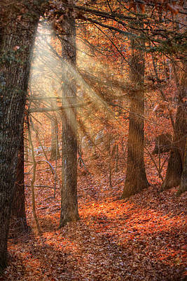 Photograph - Walking The Afternoon Path by Jeff Folger