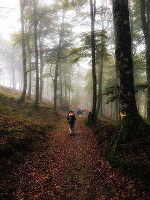 Photograph - Walking The Camino Santiago by Alan Toepfer