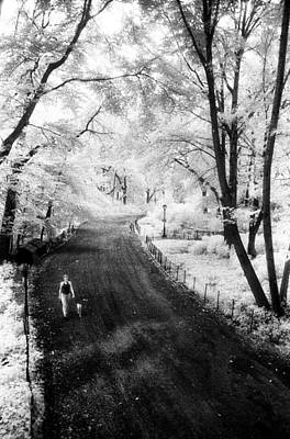 Photograph - Walking The Dog On Bridle Path by Dave Beckerman