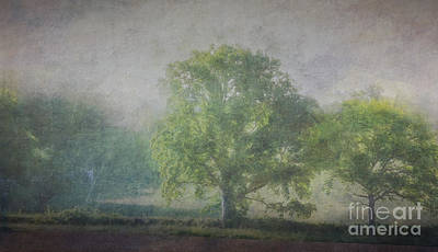 Painterly Photograph - Walking The Dog V by Robert Brown
