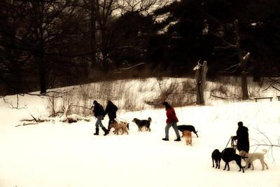 Walking The Dogs Original