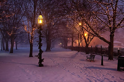Walking The Path On Salem Common Art Print