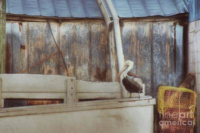 Photograph - Walking The Plank by Benanne Stiens