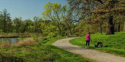 Walking The Savanna Boardwalk Trail In Forest Park Print by Garry McMichael