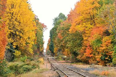 Photograph - Walking The Tracks by Charles HALL