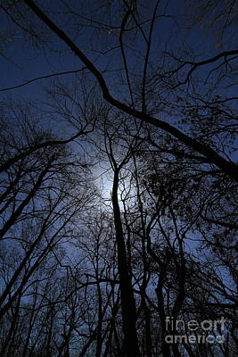 Photograph - Walking To The Light # 2 by Rick Rauzi