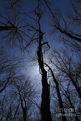 Photograph - Walking To The Light # 5 by Rick Rauzi