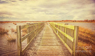 Photograph - Walkway At Bivalve by Debra Fedchin
